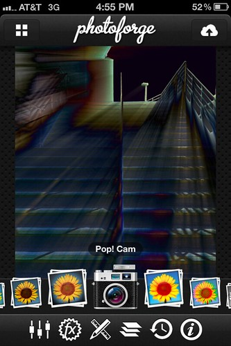 Camera Roll-596