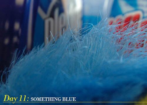 Day 11_Something Blue