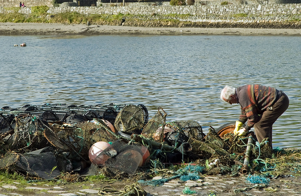 Fisherman in Bantry Bay