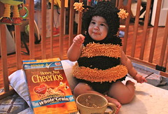 Honey Nut Cheerios Bee
