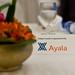 AFCSR2011 Lunch Sponsor