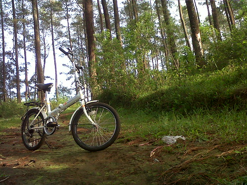 Sepeda lipat pinjaman teman yang saya potret di sebuah bumi perkemahan di bilangan Lembang, Bandung. (Foto: Yudha PS)