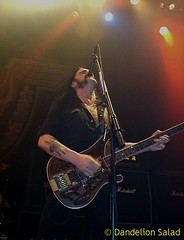 Ace of Spades (Motorhead)