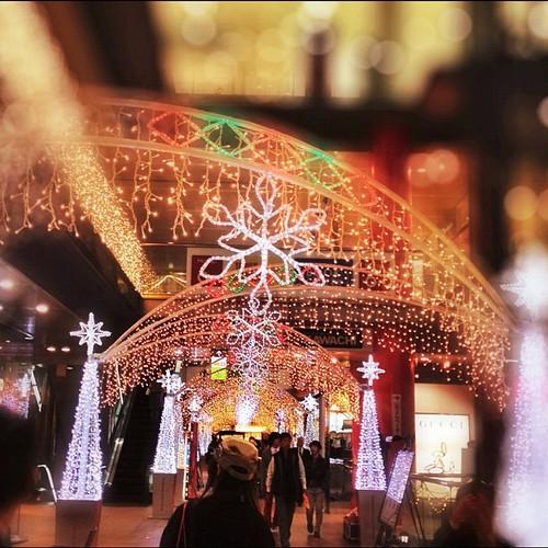 クリスマスの装いだね! #iphonography #instagram #iphone4s