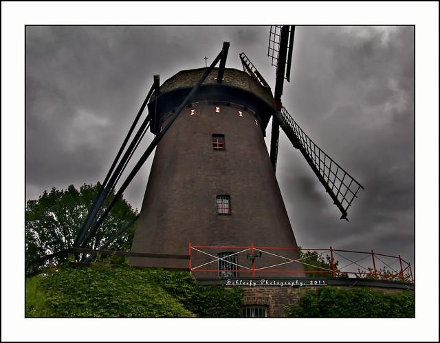 #186/365 WIndmill