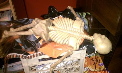 Lazy Bones!
