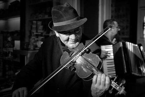(304/365) Violinista by albertopveiga