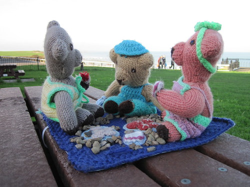 Guerrilla Knitting, Saltburn