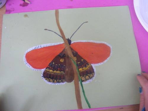 Skye's butterfly