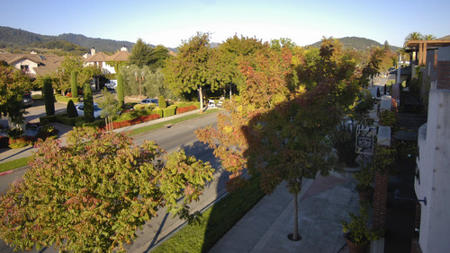 Yountville 01