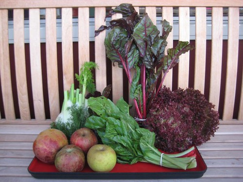 Amelishof organic CSA vegetables week 42, 2011