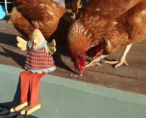 Dorcas and Hens