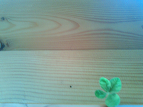 Four-Leaf Clover #101 by Karyn Ellis