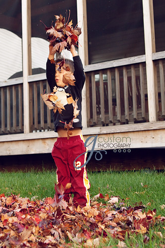 Jack & the leaves