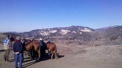 Trail ride by spirit97
