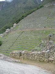 2004_Machu_Picchu 32
