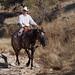 Paso Robles Horse Ranch 12