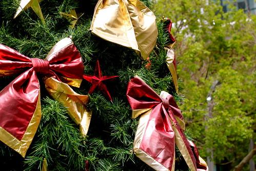 Monday: Nov 7 - Christmas tree!?!