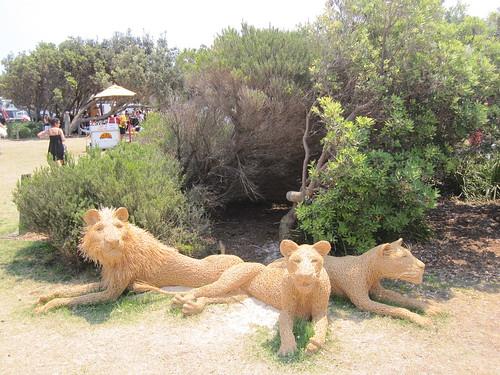 Beware! Lions!