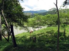 Sico, Honduras