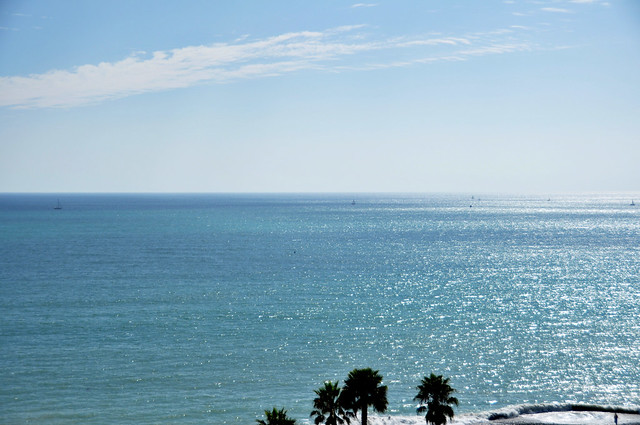 Hillside view of the Pacific at Dana Point.