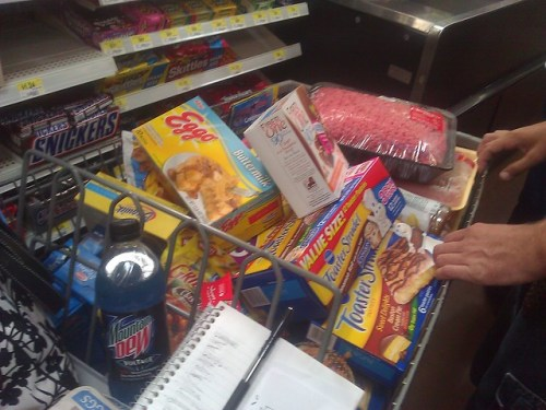226/365 {2011} - Grocery Shopping