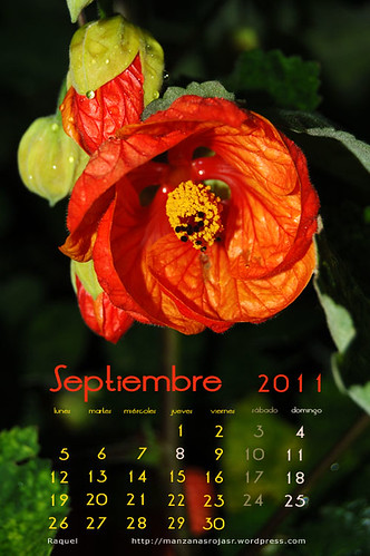 Calendario septiembre 2011
