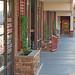 Trader Joe's Plaza - Planter and Sidewalk Ramps