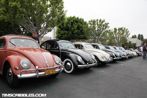 VW_bugs