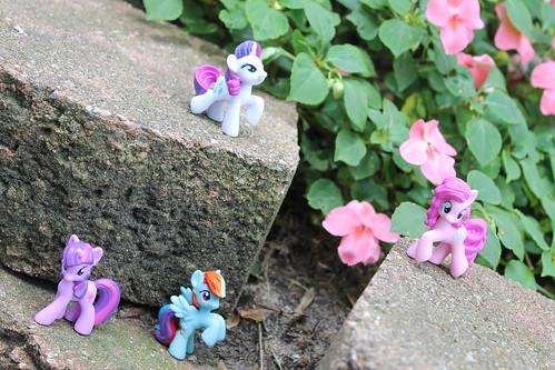 225/365 Twilight Sparkle, Rainbow Dash, Pinkie Pie and Rarity MLP toys