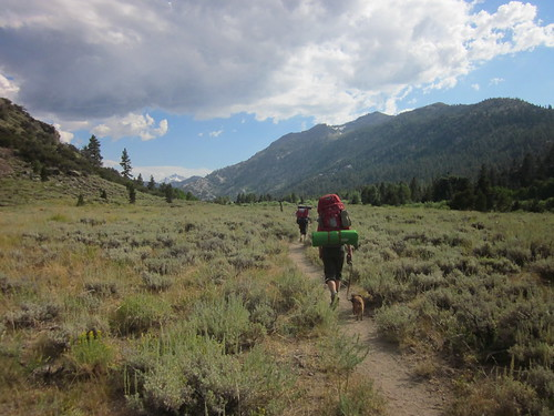 Leavitt Meadows