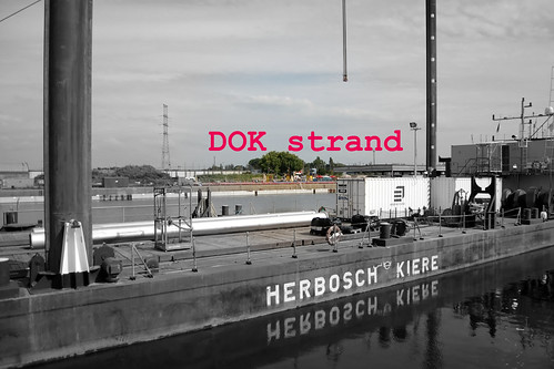 DOK strand