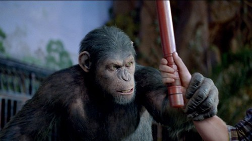 Rise-of-the-Planet-of-the-Apes-2011-Movie-Image-6-800x448