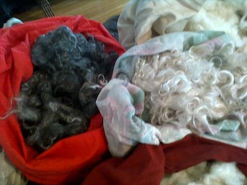 fleece inventory 003