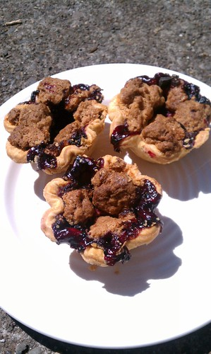 Marionberry Pie Holes