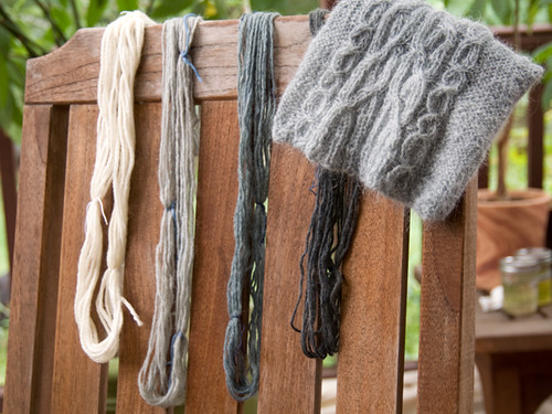 Black Bean Dye: Skeins & Hat