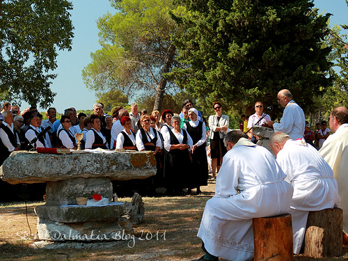 Holly Mass under the pine trees