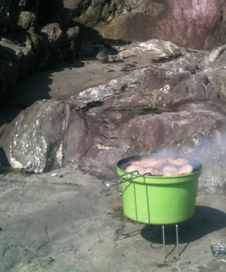 bbq at the beach
