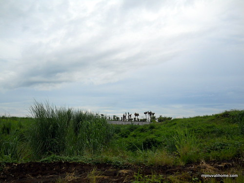 Venare, Nuvali Aug2011 (4)