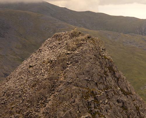 Bristly Ridge 086