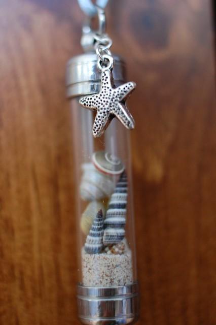 Starfish Beach - Mom (8/11)