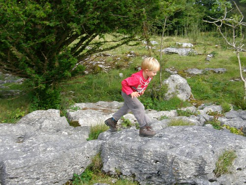 Limestone pavement playground