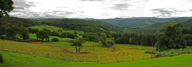 The Gwydyr Forest from the Ty'n Llwyn picnic area