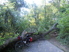 Bike Commute 93: Hurricane Irene Is No Match for My Sequoia by Rootchopper