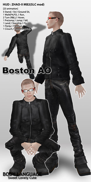 Boston AO set