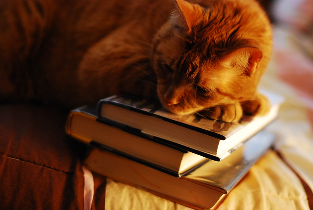 learning by osmosis