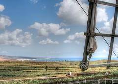 Lanzarote windmill