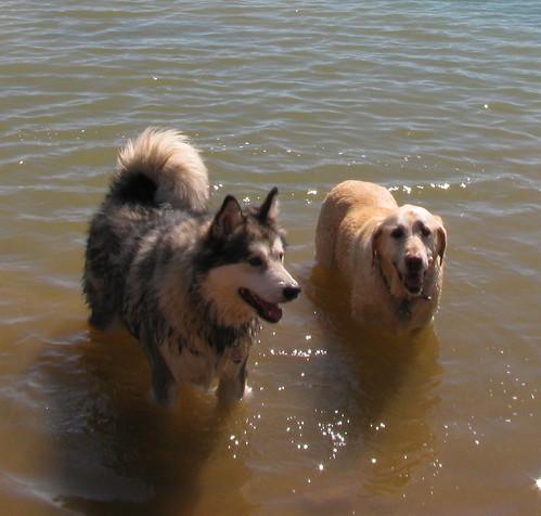 Sadie and Luka