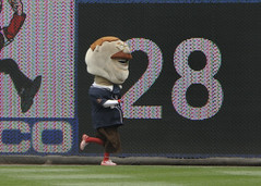 Teddy Roosevelt in the lead, Washington Nationals Presidents Race