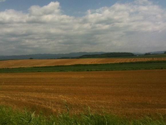 北海道っぽい風景